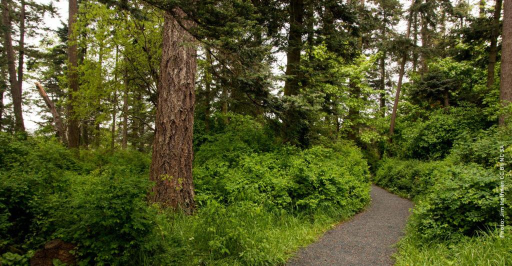 Saxs Point Park in Esquimalt, BC